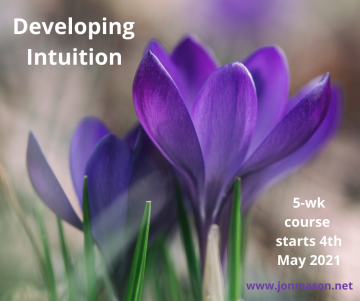 Developing Intuition - Revised Graphic